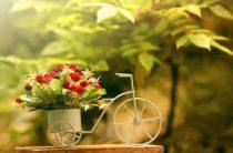 Подарок девушке. Доставка цветов на выгодных условиях