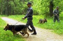 Семья с двумя детьми выехала из Москвы и пропала