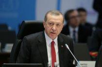 Президент Турции пригрозил судом любому, кто его оскорбит