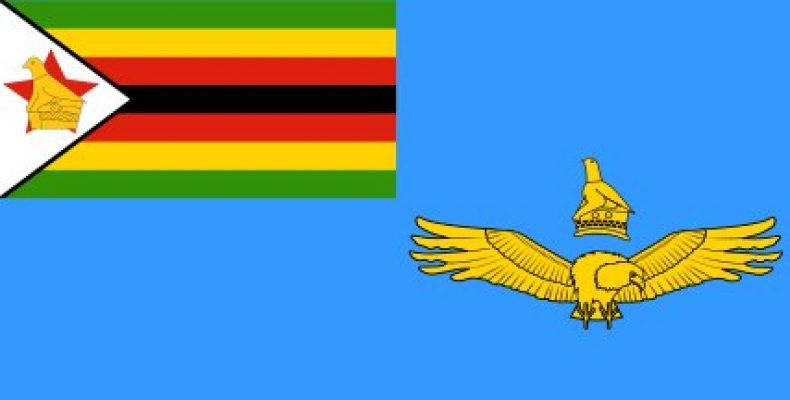Школьник в Зимбабве погиб от зенитного выстрела во