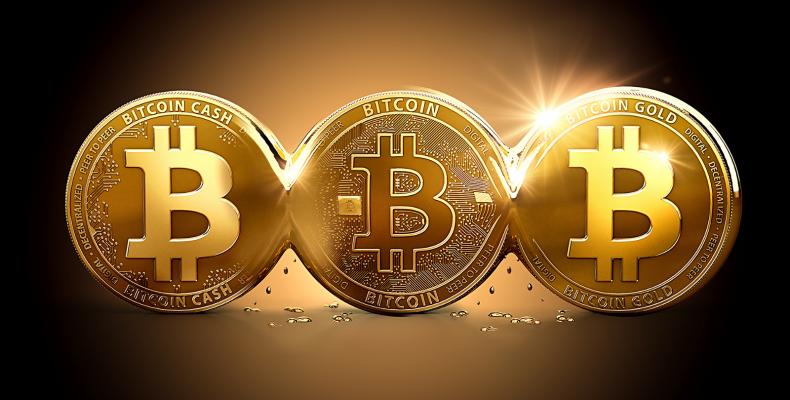 Общение и обмен опытом торговли на бирже криптовалют