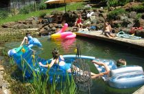 Циркуляция воды в пруду