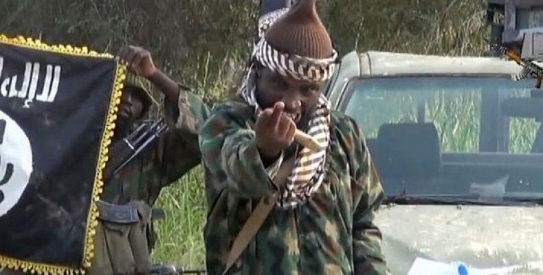 """От боевиков """"Боко Харам"""" очищено несколько деревень и"""