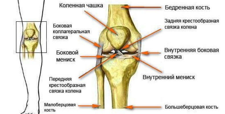 Проблемы с коленным суставом и его лечение в Германии