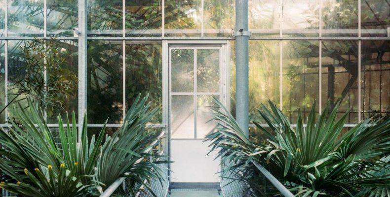 Остекление зимних садов в СПб
